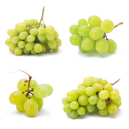 collection grapes. collection grapes on the white photo