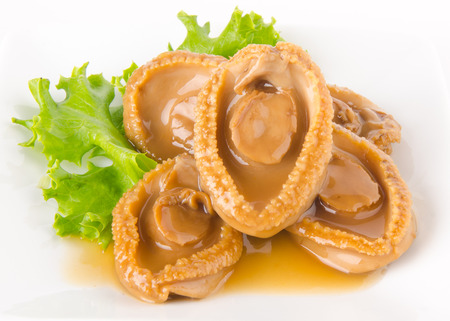 Abalones. Chinese cuisine abalone on the background. photo