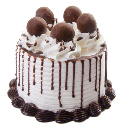 ice cream cake. chocolate ice cream cake photo