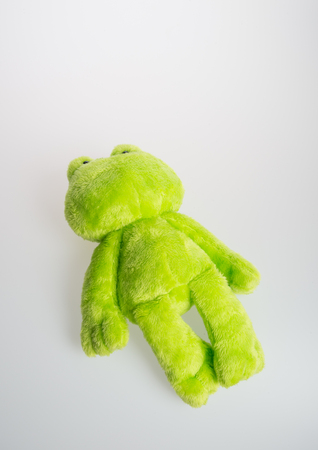 toy or frog soft toy on the background