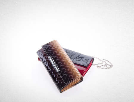 wallet or assorted purse on a background