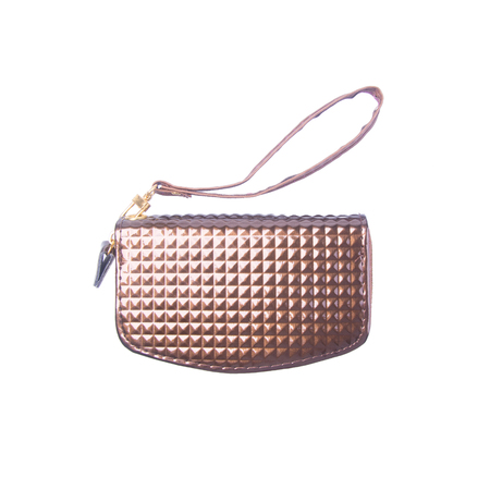 clutch or women clutch with concept on background 免版税图像