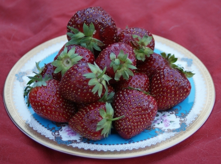 Freshly picked strawberries on a porcelain plate tempt you to nibble Stock fotó