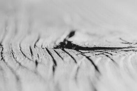 Cracked wood Stock fotó
