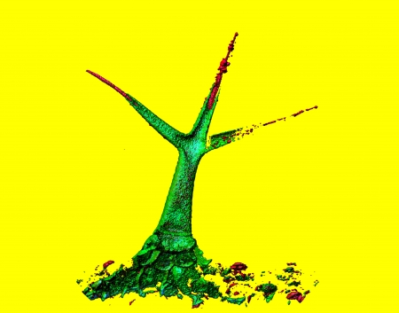 computational: Computational modelling of trichome  a leaf hair of thale cress  Arabidopsis thaliana Stock Photo