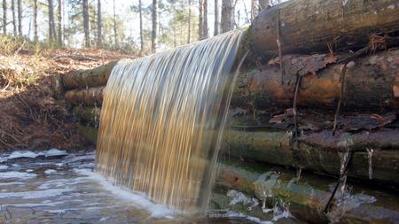 turf bog: Waterfall in Viru bog, Lahemaa National Park, Estonia