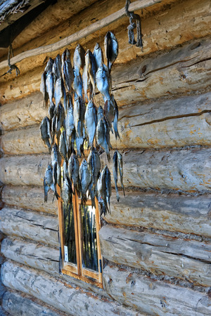 Drying fish on the wall of a wooden house in Setomaa, a region in southern Estonia.