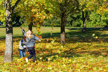 Children playing with colorful maple leaves fallen to ground in October.