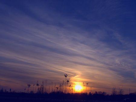 Sunset & Wildflowers photo