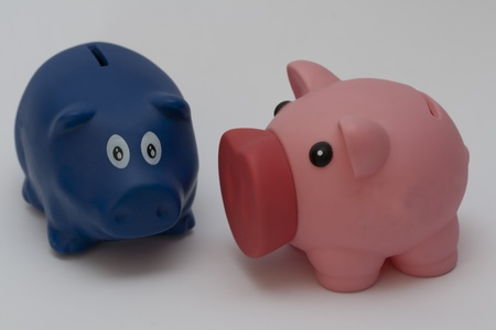 couple of pigs for money photo