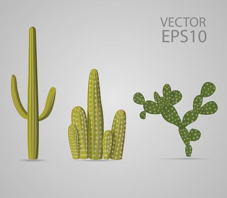 cactus set Ilustração