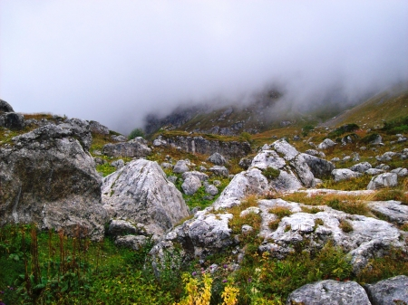 Rocky mountain slope covered with green grass and flowers and clouds covering the opposite side of the mountain