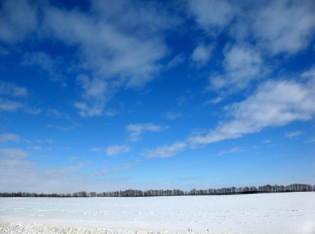 Snowy field and a blue sky with clouds. Stock Photo