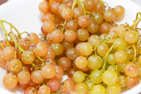 Gew?rztraminer type Green grape isolated on white plate. With clipping path. Full depth of field. - Image