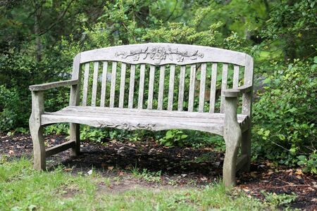 High quality stylish park wooden bench in the garden - Image