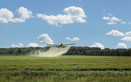 fertilize: horizontal image of a yellow spray plane flying low over the field spraying the field under a blue sky with clouds. Editorial