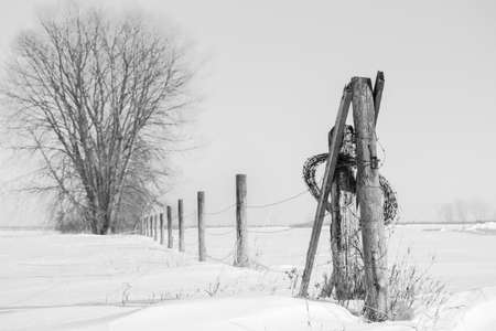 l first: l black and white winter scene of barbwire fence with wooden posts with extra wire wound around the first post in the forefront with one dead tree in the background surrounded by piles of snow. Stock Photo