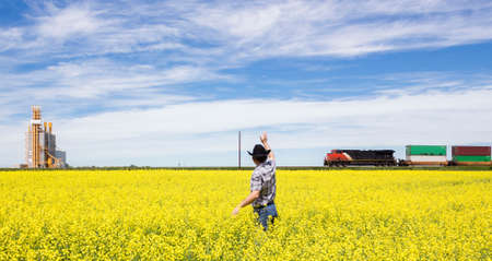 agronomist: horizontal image of a farmer waving to the train passing by while standing in a yellow canola field. Stock Photo