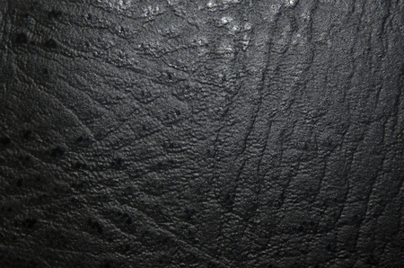 forgery: synthetic leather for background