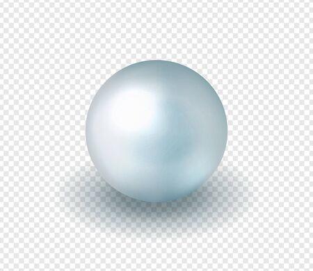 Natural, shiny, sea  pearl. Vector illustration Illustration