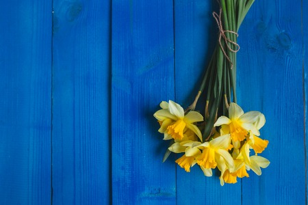 Yellow daffodils bouquet on blue wooden background, easter card. Place for text.Flowers background Stock Photo