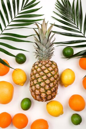 Pineapple, orange, lemon, grapefruit, lime, coconut and palm leaves lying on white background Reklamní fotografie