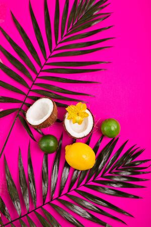 Tropical bright background with exotic tropical palm leaves, coconuts, lime, and lemon. Reklamní fotografie