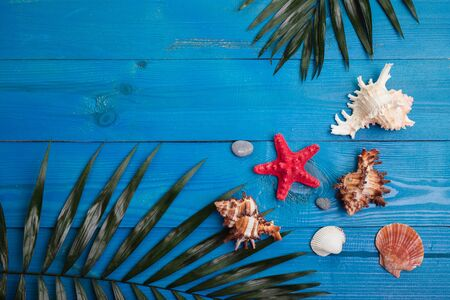 Tropical summer background with palm leaves, sea shells on blue wooden table. Reklamní fotografie