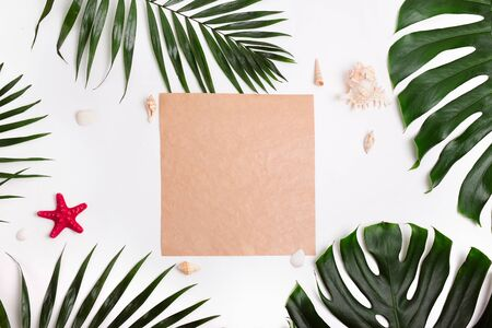 Tropical palm leaves , sea shells and craft paper on white background. Summer concept Reklamní fotografie