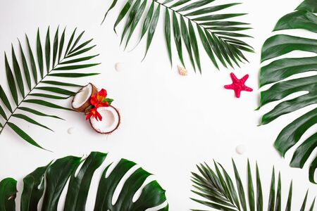 Tropical palm green leaves and sea shells and coconuts on white background. Summer concept