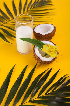 Glass of milk or yogurt , coconuts, palm leaves, exotic flower on yellow backround Reklamní fotografie
