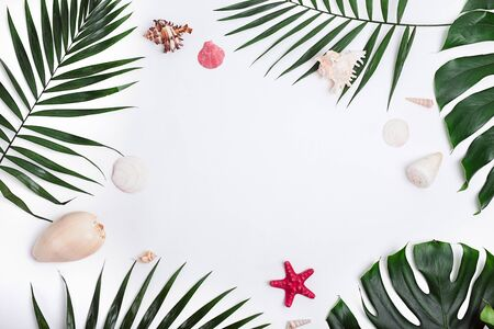 Tropical palm leaves and sea shells on white background. Summer concept
