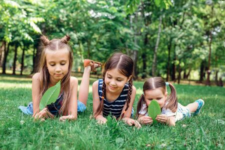 Kids playing in summer park. Three little girls laying on green fresh grass
