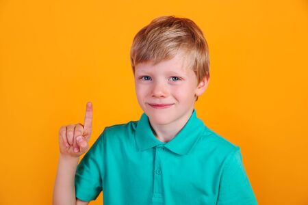Portrait of cute little boy with finger pointed up 免版税图像