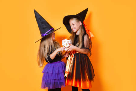Two little witches in halloween costumes on orange background