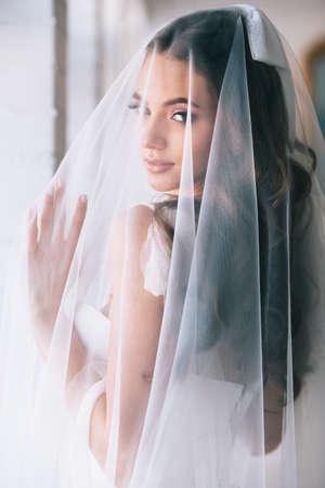 Beautiful bride portrait with veil over her face.Closeup portrait of young gorgeous bride. Wedding. Standard-Bild