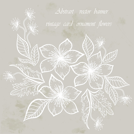 torn jeans: Vintage background flowers. Vector abstract invitation card.