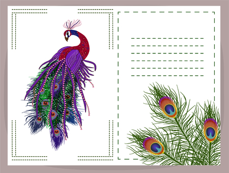 Beautiful peacock background. Peacock and feather. Vector illustration. EPS 10 矢量图像