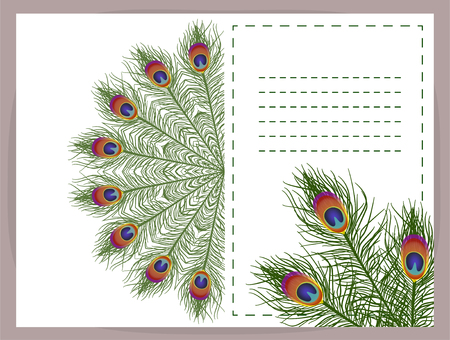 Beautiful background feathers with space for text. Vector. EPS 10