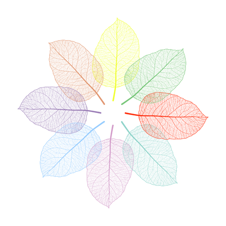 Beautiful background with colored leaves. Vector illustration. EPS 10 Illusztráció