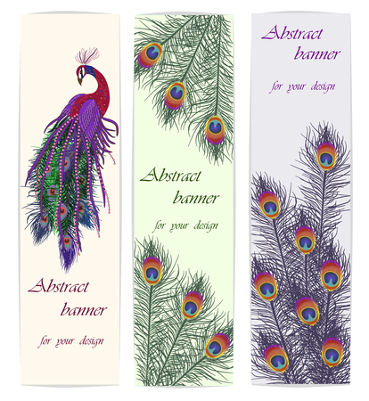 Set backgrounds with peacock and feathers. Vector illustration, EPS10