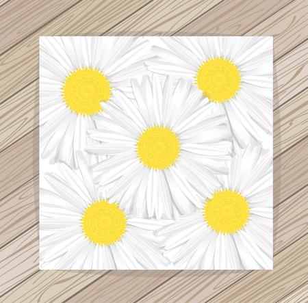 daisyflower: Beautiful background flowers chamomile. Vector. EPS 10 Illustration
