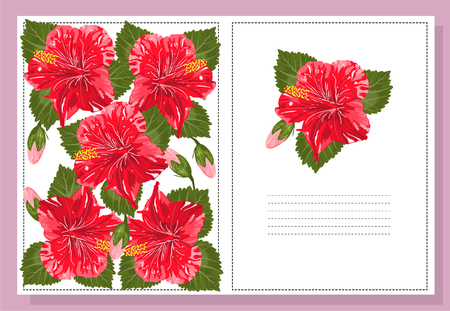 clout: Beautiful background hibiscus flower with space for text. Vector. EPS 10