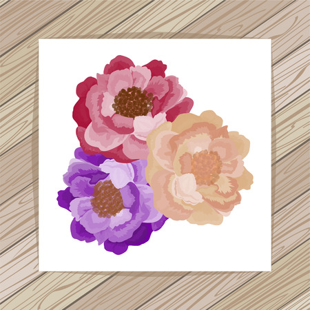 beautyful: Beautyful colorful roses on white background. Vector illustration. EPS 10