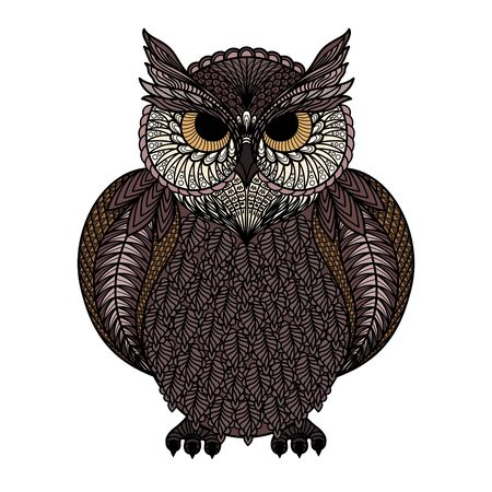 Hand drawn of owl isolated. Colorful version. Çizim