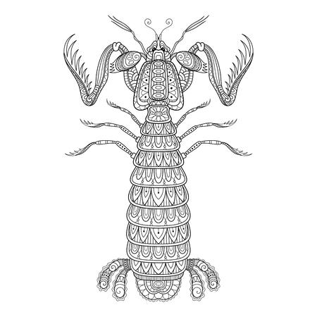 Crevette Mantis Monochrome Décorative De Vecteur. Créature Marine Isolée Sur Fond Blanc. Pour le livre de coloriage