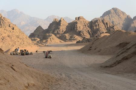 desierto: Desierto en �frica. Safaris ATV. Excursiones en Egipto.