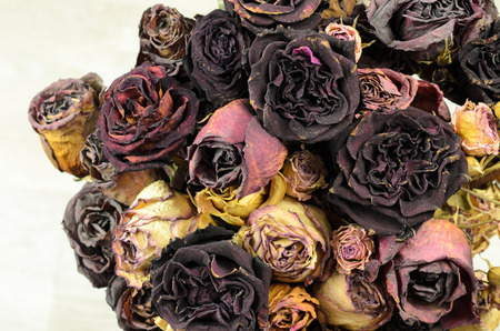 wilted: Bouquet of dried flowers. A lot of wilted rose