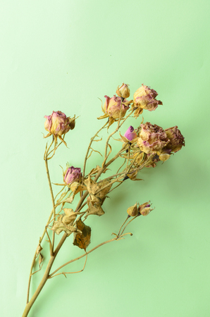 wilted: Bouquet of dried flowers. Wilted rose on a green background Stock Photo