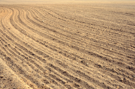 arable land: Arable land at harvest time in farmland Stock Photo